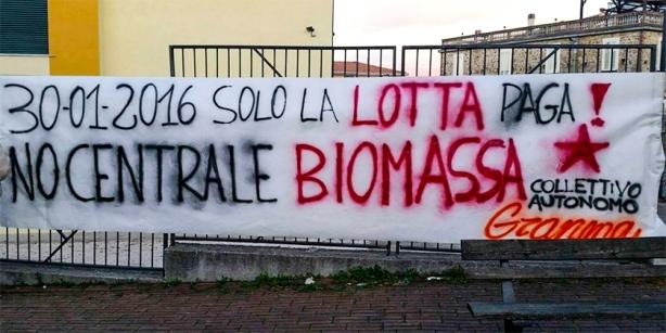 biomassa02