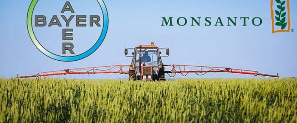 bayer-monsanto-720x300.jpg